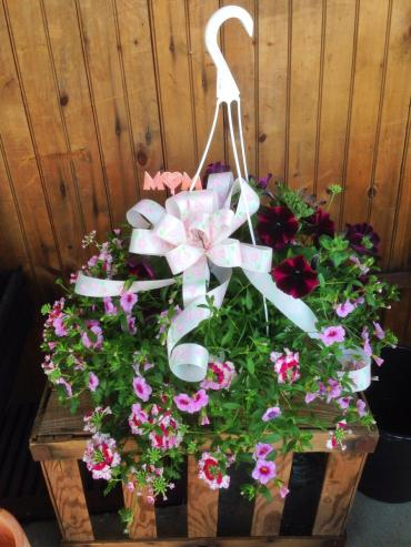 Mixed Hanging Basket