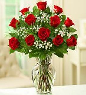 One Dozen Red Roses Arranged