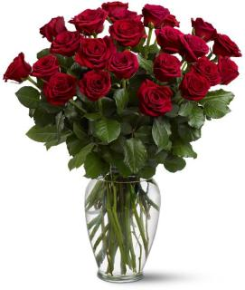Two Dozen Red Roses TF