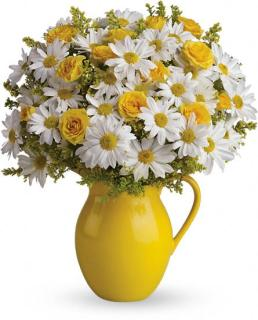 Teleflora\'s Sunny Day Pitcher of Daisies Deluxe