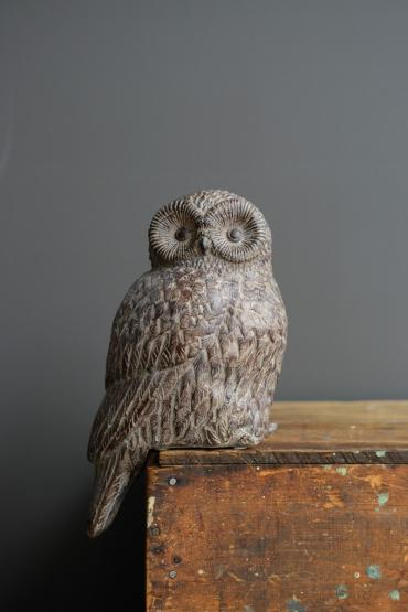 Shelf Sitting Owl