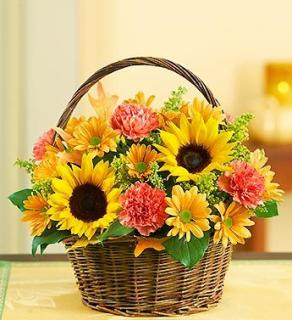 Fields of Europe for Fall Basket Small