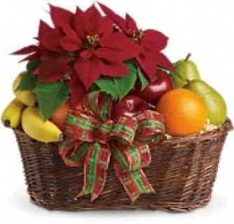 Fruit & Poinsettia Gift