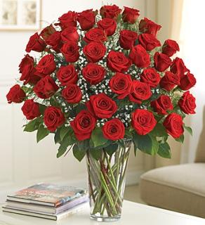 Four Dozen Roses Arranged