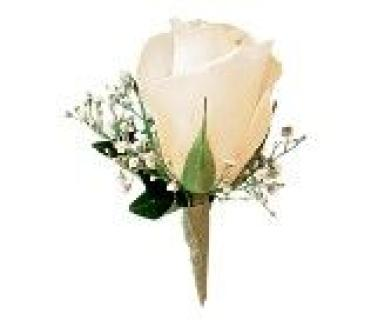 Rose Boutonniere tf169-11